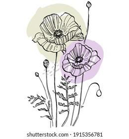 Contemporary art poppies posters in trendy colors. Abstract hand drawing flowers and geometric elements and strokes, leaves and flower. Design for social media, invitation, postcards, prints