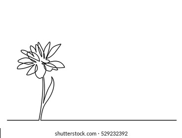 continuous line drawing of beautiful flower