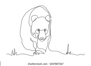 continuous line drawing of cute panda wildlife zoo vector illustration.