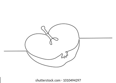 Continuous line drawing. Half an apple, a fruit in a cut. Drawing by hand. Lines on a white background.