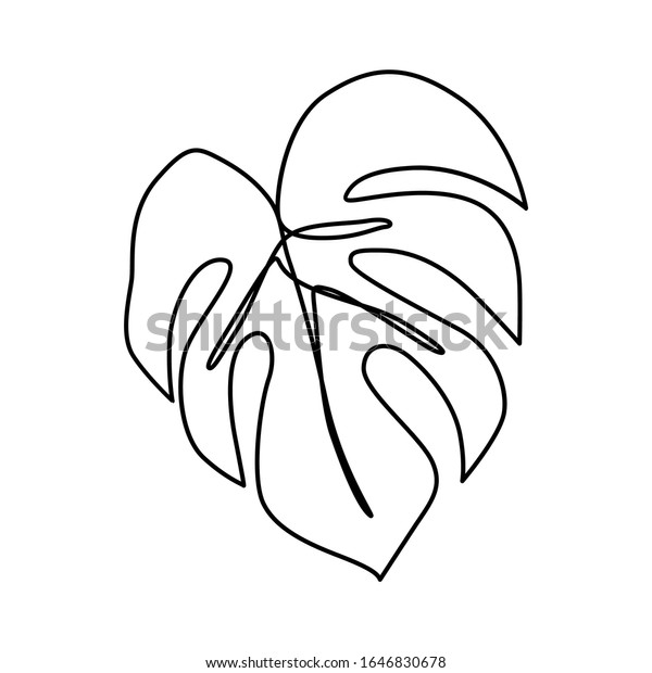 Continuous Line Monstera Leaf Tropical Leaves Stock Vector Royalty Free 1646830678 Vector palm beach tree leaves jungle botanical flowers. https www shutterstock com image vector continuous line monstera leaf tropical leaves 1646830678