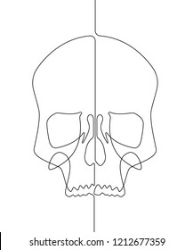 Continuous Line Skull Vector Graphic