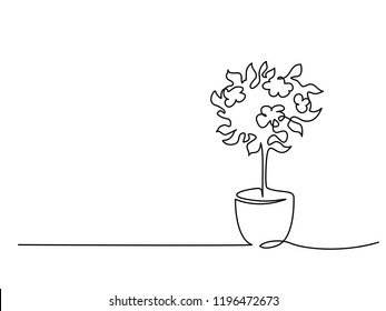 Continuous one line drawing. Blooming tree in pot. Vector illustration