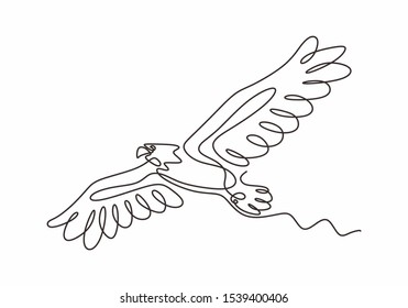 Continuous one line drawing of eagle or hawk bird vector, Illustration minimalism birds flying on the sky. Concept of freedom animal hand drawn sketch design. Simplicity style.