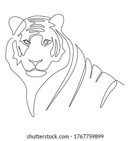 Continuous one line drawing of a tiger looking at the camera. Vector illustration