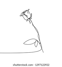 Continuous one line drawing vector illustration of rose flower minimalist design minimalism concept