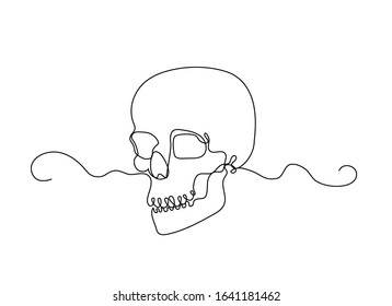 Continuous thin line human skull vector illustration, minimalist cranium sketch doodle. One line art scull icon, single outline drawing or simple skull logo