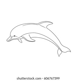 Contour image of a dolphin, vector illustration.