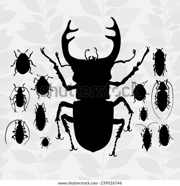 Contrast vector set with silhouette of bugs. Drawing of beetles. Insect on the background with gray leaves. Cartoon bug illustration.