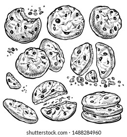 Cookie vector hand drawn illustration. Round chocolate chip cookies with crumbs, bitten and whole. Homemade biscuits.