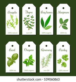 Cooking herbs tags. Cute label set. Culinary herbs. Bunch of seasonings. For cosmetics, organic market, farm products, health care products. Can be used as logo, price tag, label