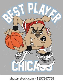 Cool dog playing basketball vector design