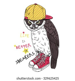 cool owl dressed up in sneakers and cap, hand drawn graphic, animal illustration, t-shirt graphic, artwork