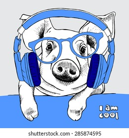 Cool Pig portrait with glasses and blue headphones. Vector illustration.