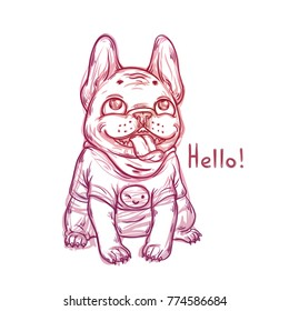 Cool sketch portrait of french bulldog wearing t-shirt with a smile emoji. Vector graphic illustration with a cartoon happy fat dog
