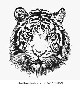 Cool Tiger Face Vector Illustration