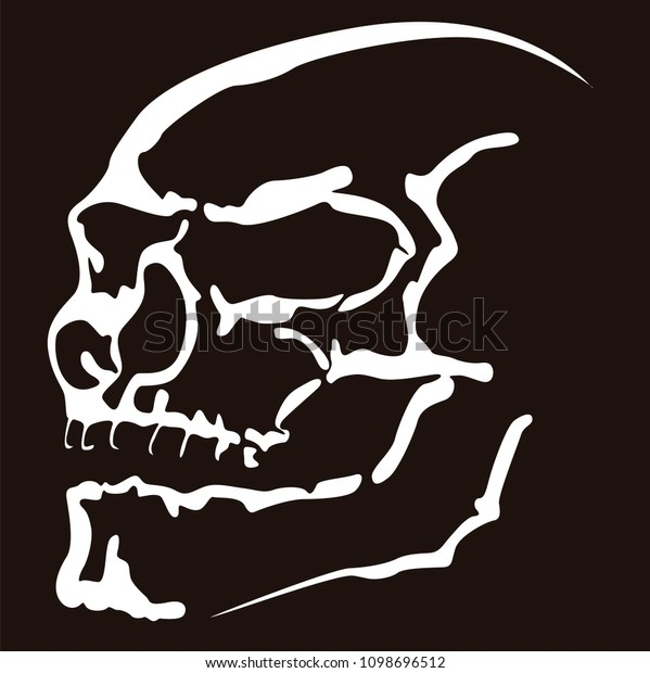 Cool vector illustration of the silhouette of a mean skull in negative contrast.
