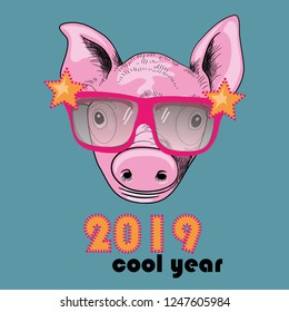 Cool Year 2019. Pig with cool sunglasses. Vector illustration on blue background