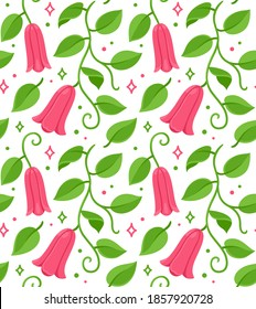 Copihue, Chilean bellflower seamless floral pattern. National flower of Chile. Vector drawing on white background.
