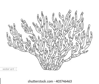 Coral isolated, coral reef. Vector illustration. Zentangle coral. Coloring book page for adult. Hand drawn artwork. Coral reef concept, ocean coral for card, ticket, branding, logo label. Black, white