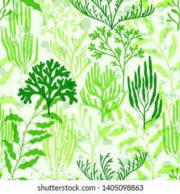 Coral polyps seamless pattern. Kelp laminaria seaweed algae background. Exotic marine life pattern. Caribbean staghorn and pillar corals diversity. Marine water plants wallpaper vector graphics.