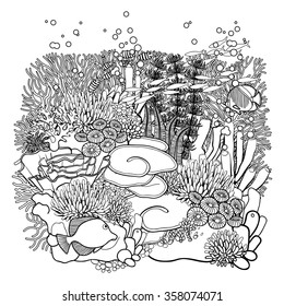 Coral reef  in line art style. Ocean plants and rocks isolated on white. Coloring page design for adults and kids