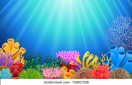 corals with underwater view background. Vector illustration
