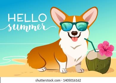 Corgi dog wearing reflective sunglasses on a sandy beach, ocean in background, green coconut drink, Hello Summer text. Funny humorous lifestyle, tropical vacation, summer holidays, warm weather theme.