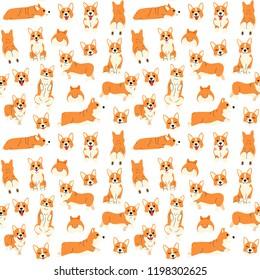 corgi pattern,dog poses,dog breed