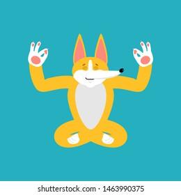 Corgi yoga. Dog syogi. Pet Relaxation and meditation. Vector illustration