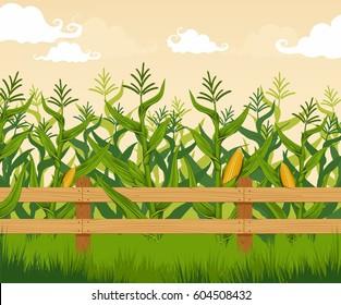 Imágenes Fotos De Stock Y Vectores Sobre Milpa Shutterstock