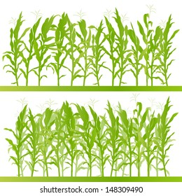 Corn field detailed countryside landscape illustration background vector