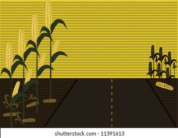 Corn field vector scene