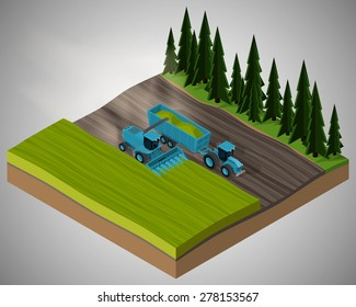 Corn harvester and agricultural tractor harvests of corn in the field. Equipment for agriculture.