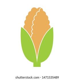 corn icon. flat illustration of corn - vector icon. corn sign symbol