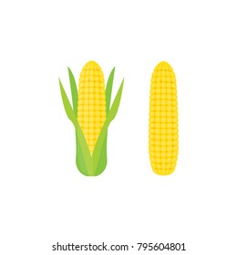Corn icon isolated vector illustration on white transparent background