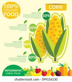 Corn. Infographic template. vector illustration.