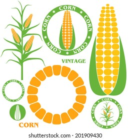 Corn. Isolated icon and logo on white background. Vector illustration 10
