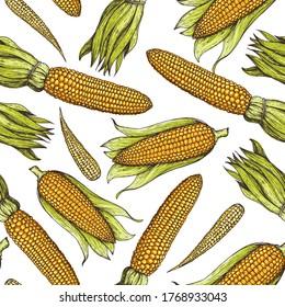 Corn, maize seamless pattern. Hand drawn corn design. Color background. Vector illustration. Corn on the cob hand drawn vector illustration.