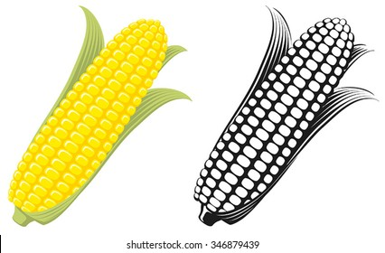 Corn on the Cob / Sweetcorn with leaves, flat graphic vector illustration. Colour and Black & White. Fully adjustable & scalable.