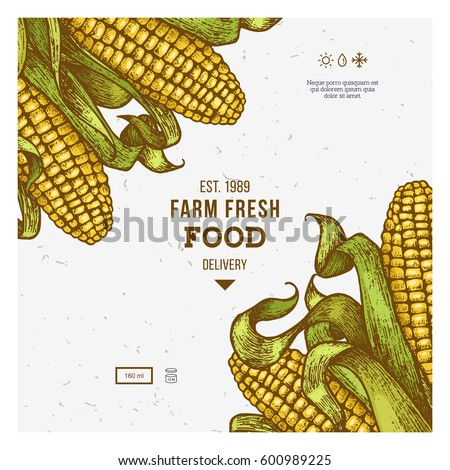 corn on cob vintage design template stock vector royalty free
