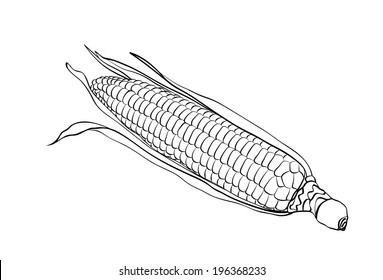 corn with simple lines