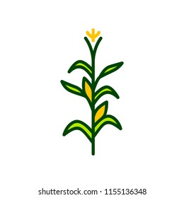 corn tree vector icon illustration