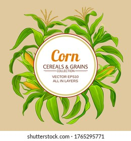 corn vector frame on color background