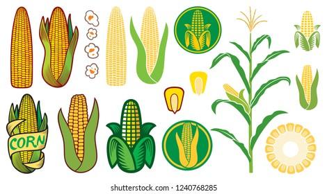 corn vector icons set (grain or seed, stalk, popcorn, corncob)