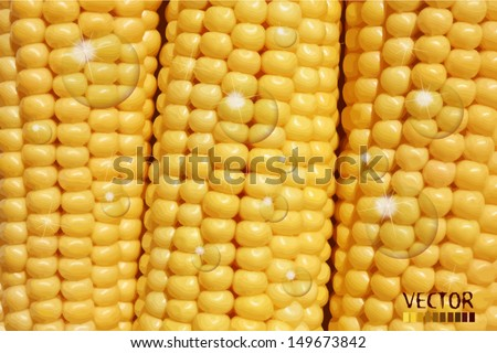 Corn Water Drops Stock Vector (Royalty Free) 149673842 - Shutterstock