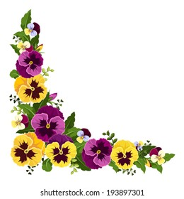 Corner background with pansy flowers. Vector illustration.