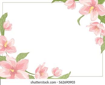 Corner frame template with sakura magnolia hellebore flowers on white background. Horizontal landscape orientation. Vector design illustration floral garland element for decoration, card, invitation.
