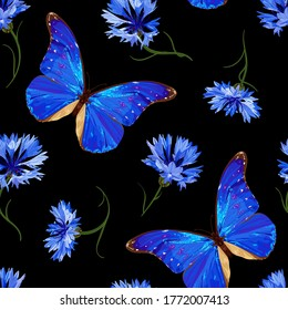 Cornflower and butterfly. Floral seamless pattern with neon blue butterfly and cornflowers on a black background. Stock vector illustration.