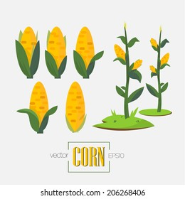 corn stalk images stock photos vectors shutterstock rh shutterstock com corn stalks clipart black and white fall corn stalk clipart